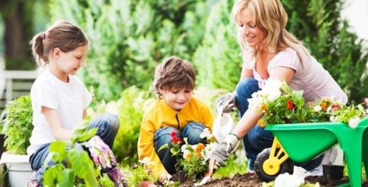 gardening__large