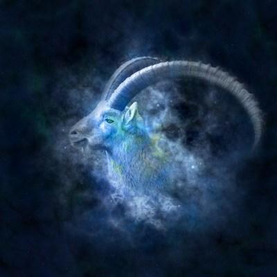 capricorn-galaxy